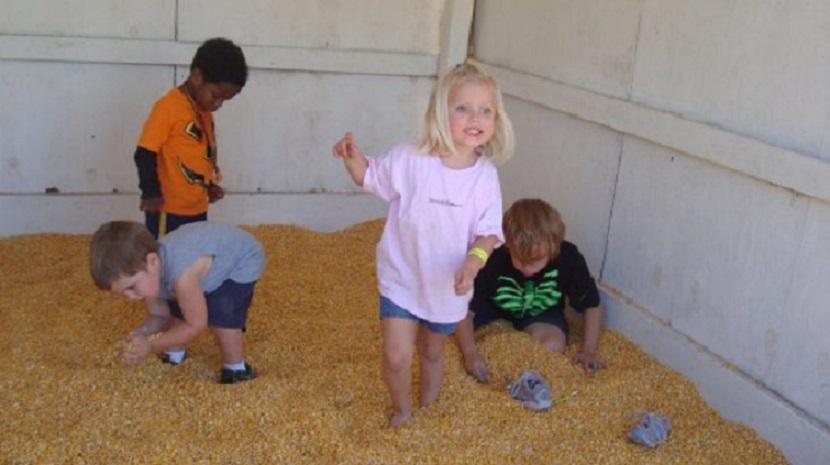 newberry-cornfield-maze-my-pic-resize-again